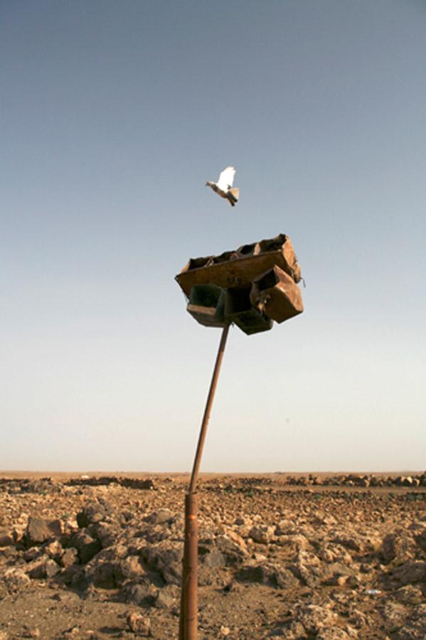 Bedouins02