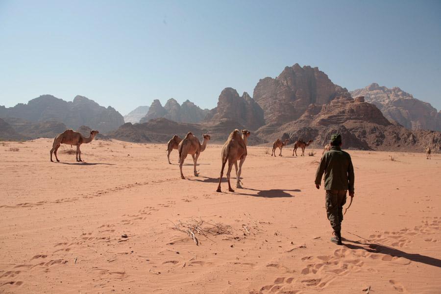Bedouins18
