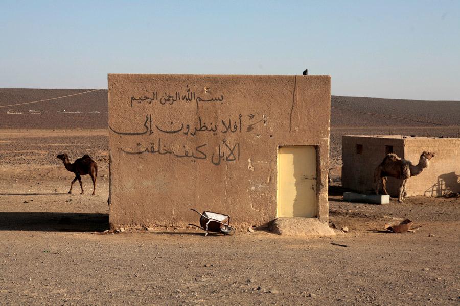 Bedouins19