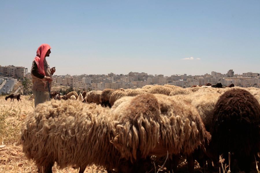 10 mai 2008 - Deif allah elWahsh, famille originaire de Bethlehem -  colline Rabouet 'Abdoun- Amman, Jordanie