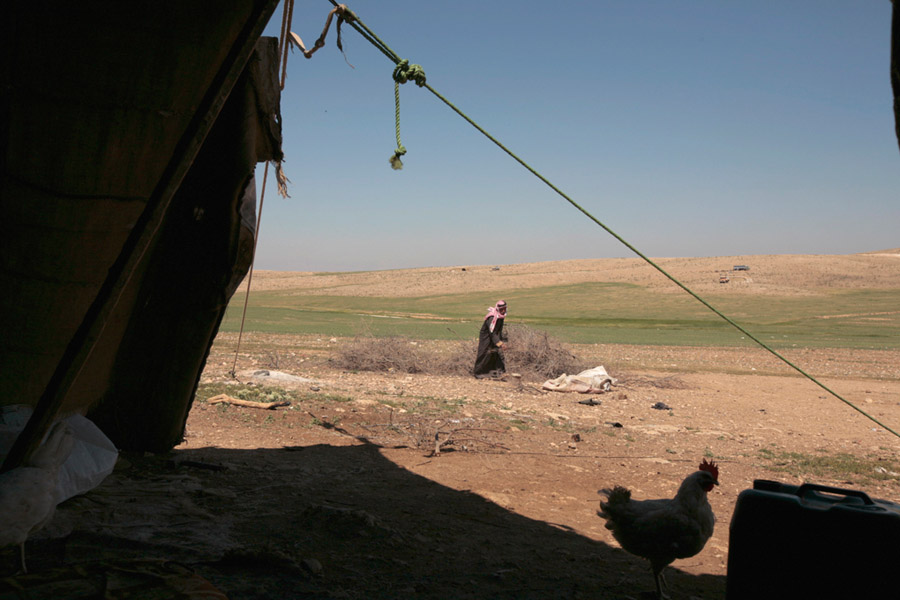 2 avr 2008 - tente et élevage de Hamed Hamid el-Hadid, près du village de Hosha, dpt de Ramsa - Jordanie