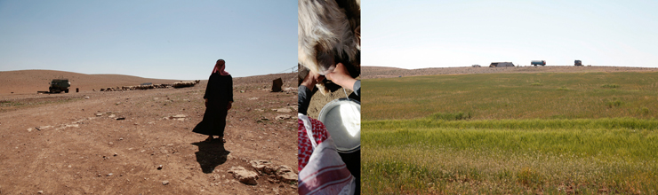 Bedouins-Today-4