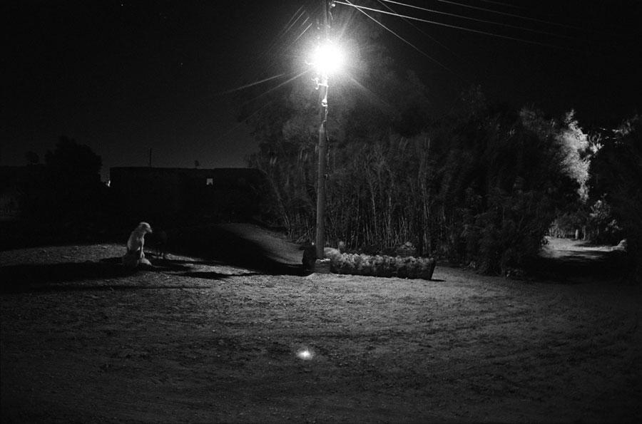nocturnes36